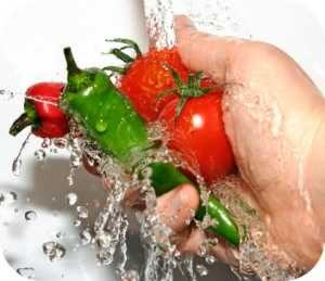 Higiene e Manipulação de Alimentos ( 8 hs )